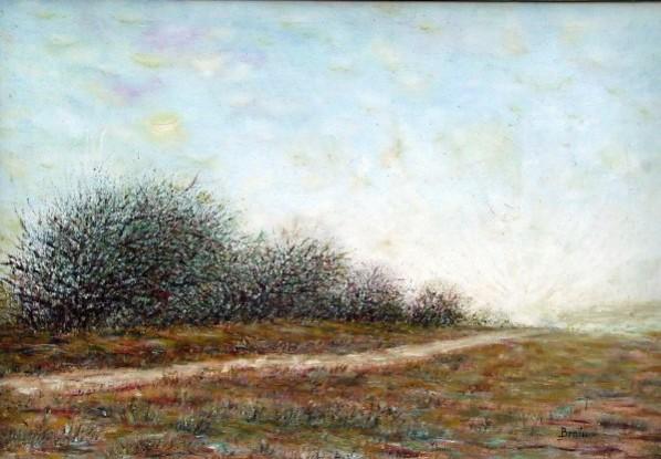 alte Picturi Drumul.spre.soare