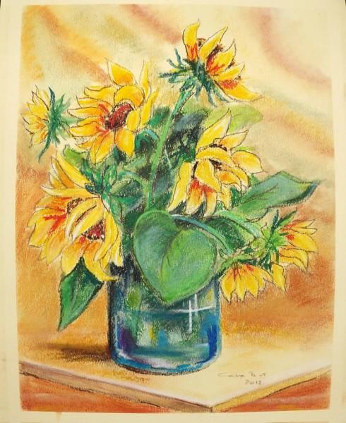 alte Picturi Floarea soarelui2012