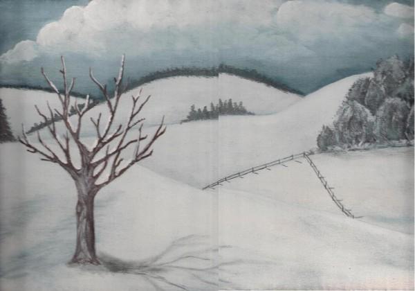alte Picturi Iarna