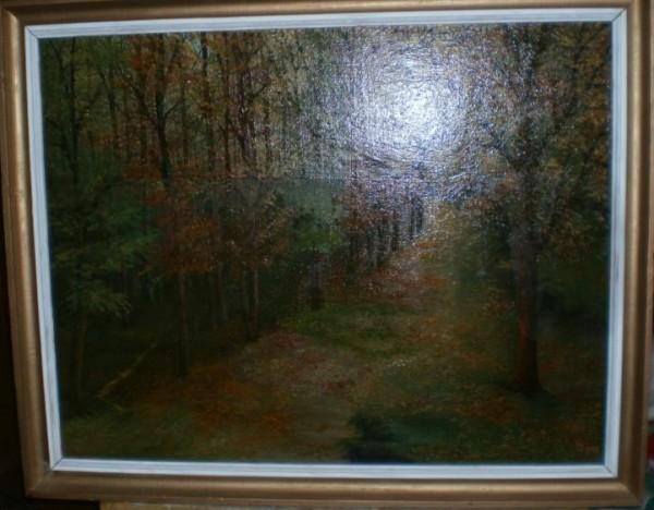 alte Picturi Drum in padure