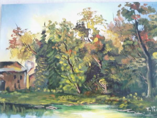 alte Picturi Lacul