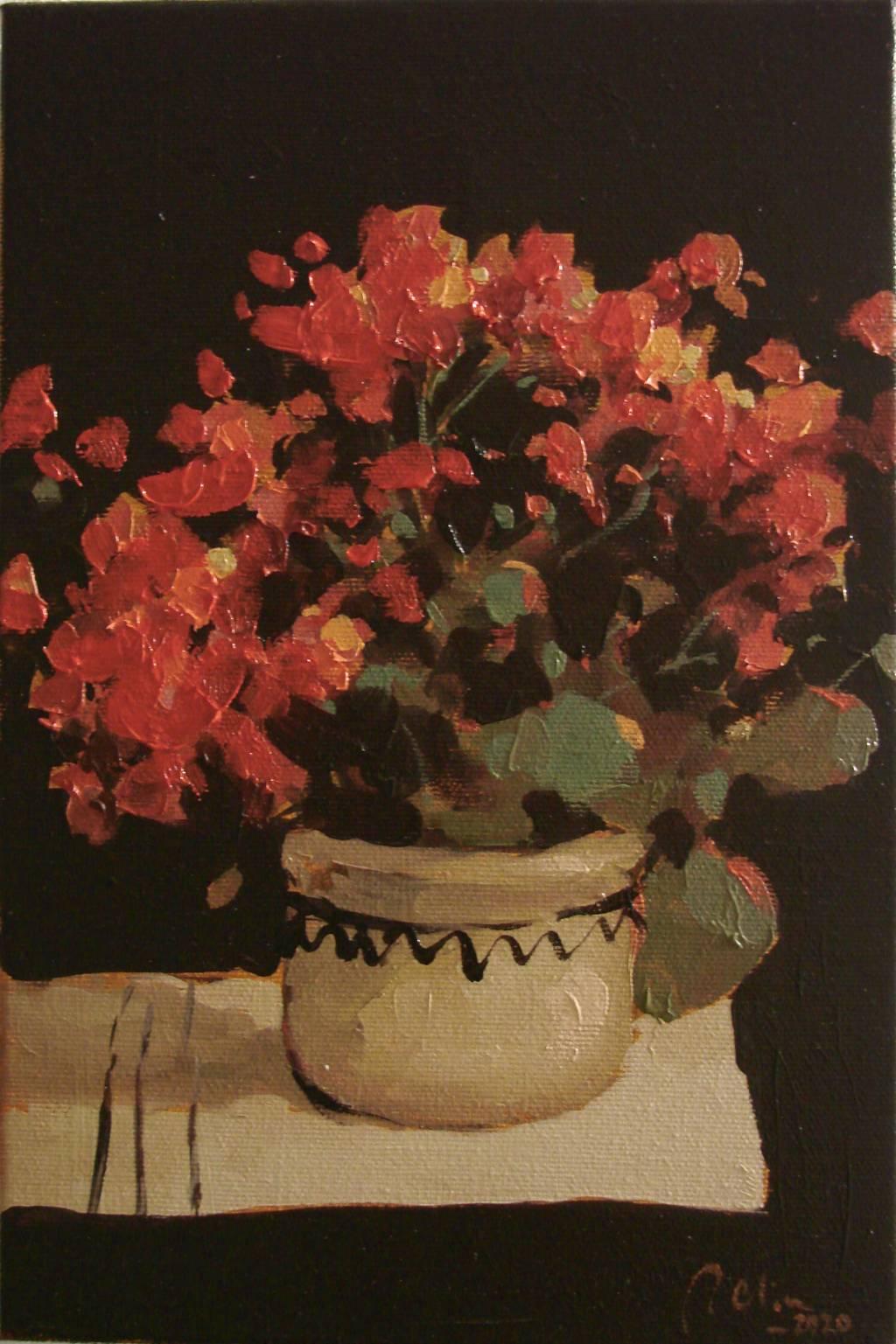 Poza Cana cu flori de muscata