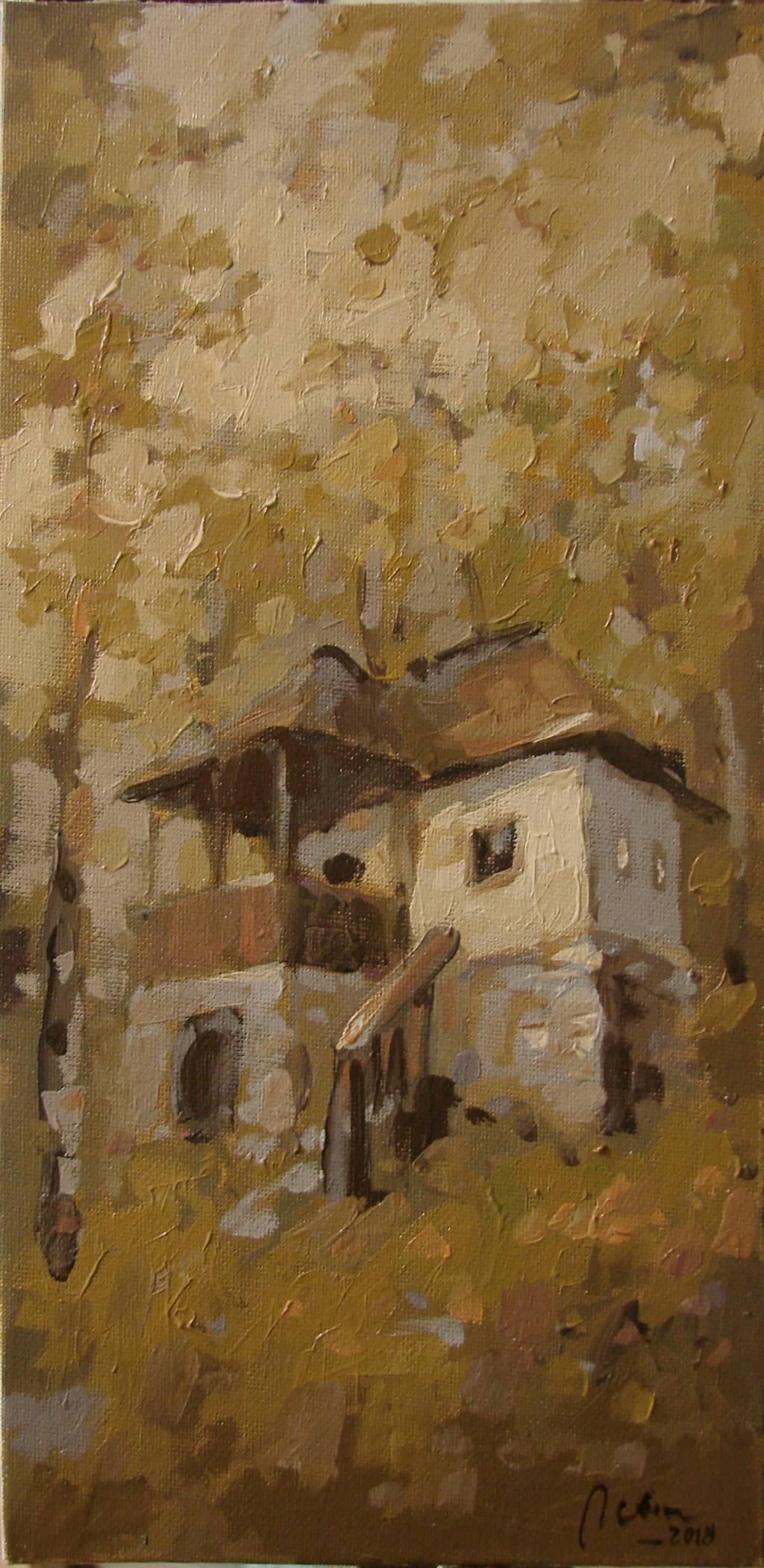 Poza Casa taraneasca