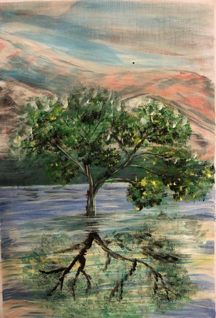 Poza Copac în apă