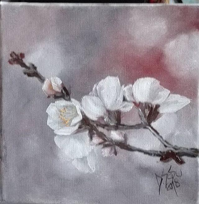 Poza Crenguta cu flori albe
