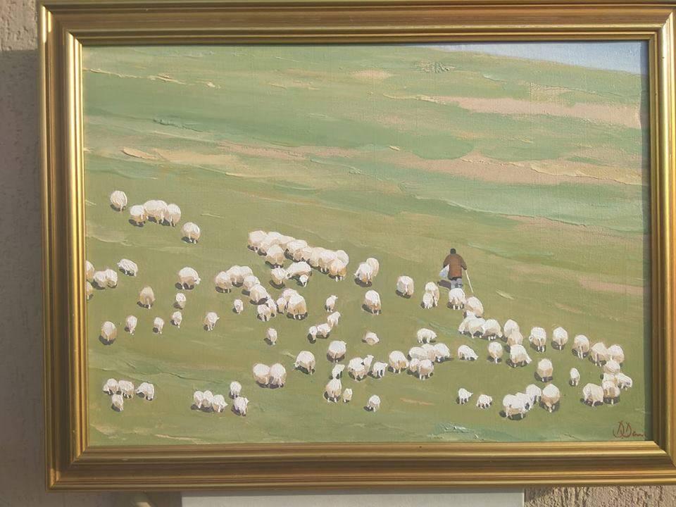 Poza Cu oile la pascut