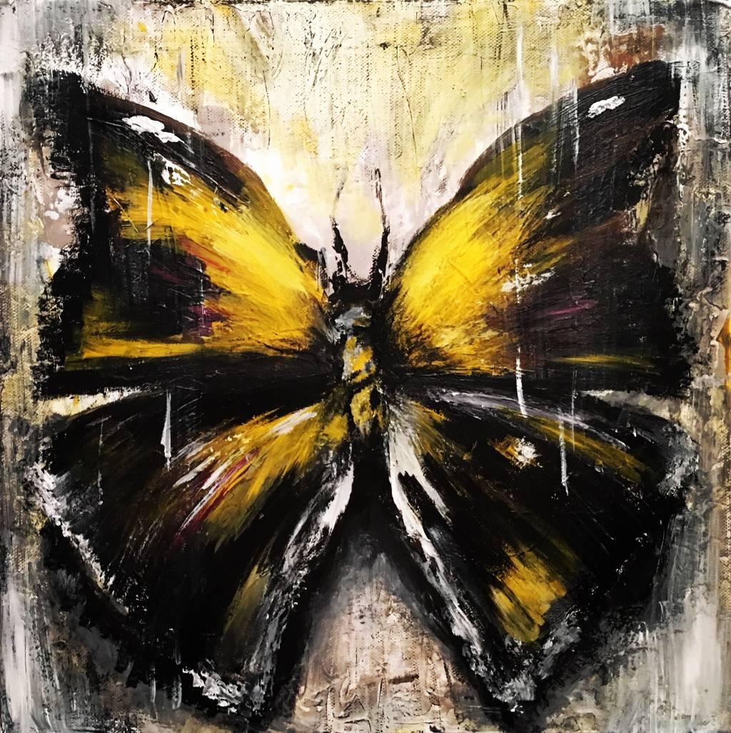 Poza Fluture