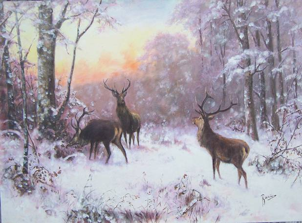Poza Iarna cu cerbi