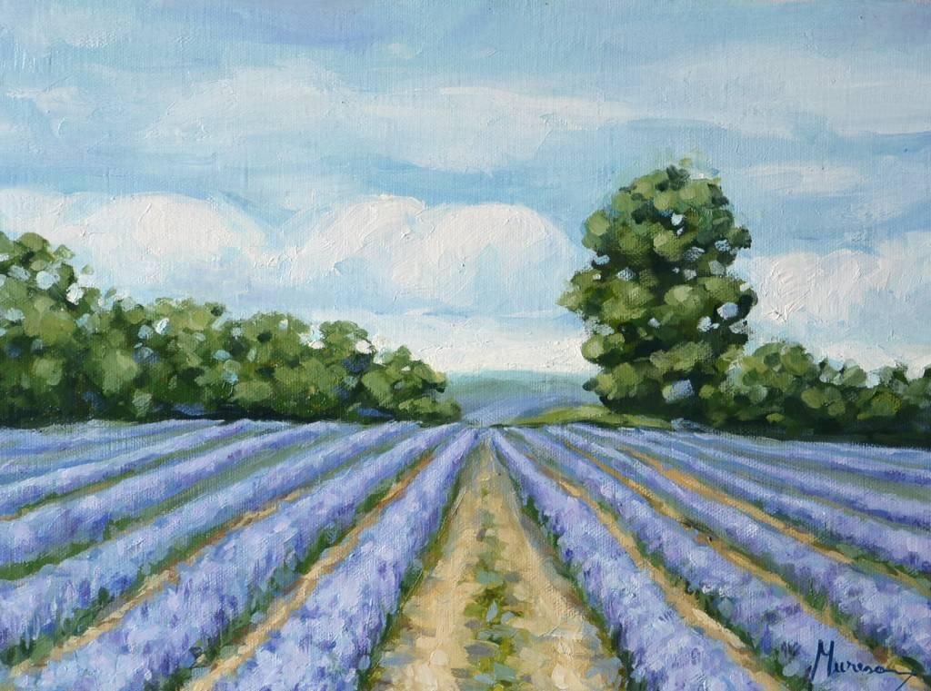 Poza Lavender road