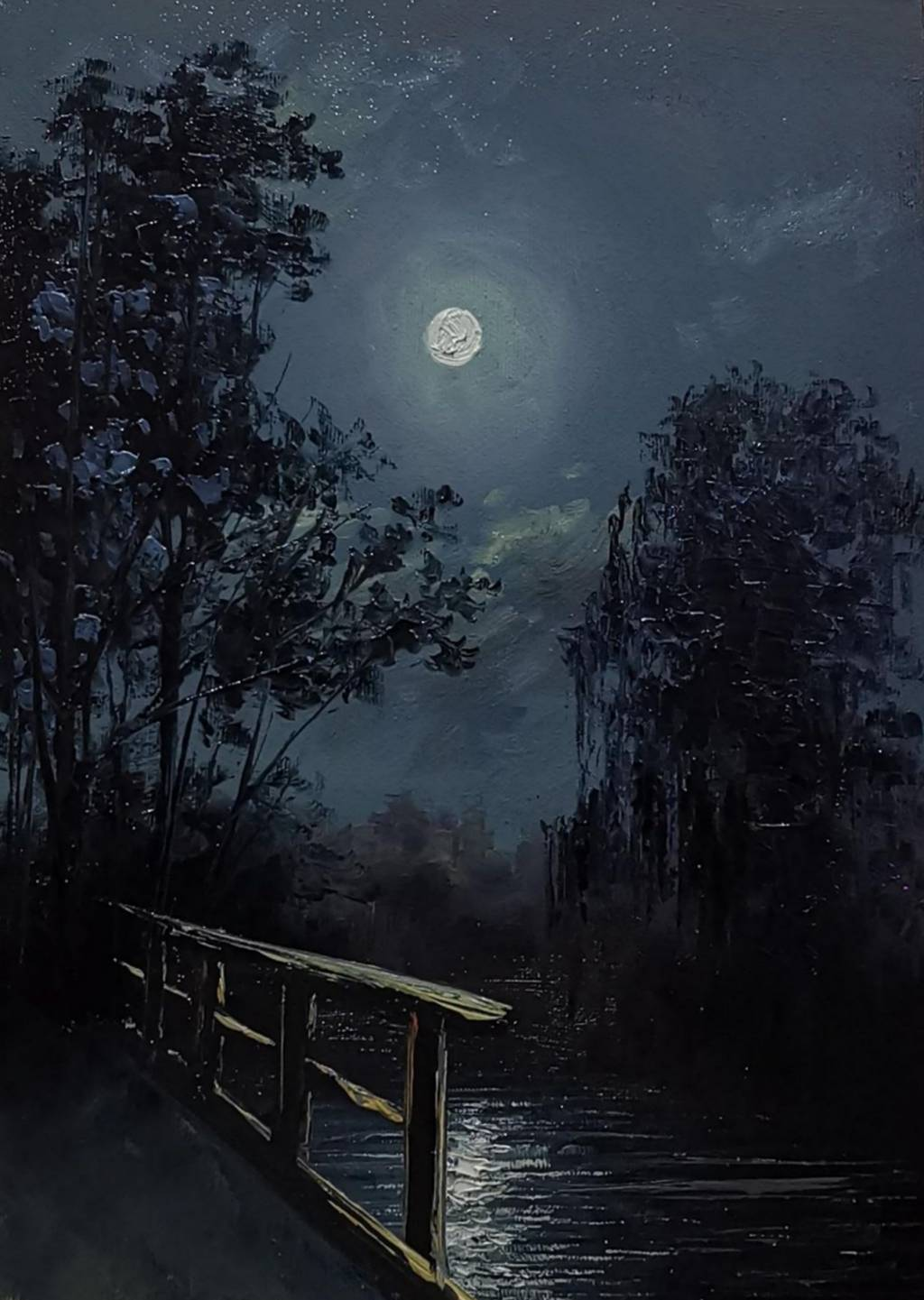 Poza Nocturna mica 2019