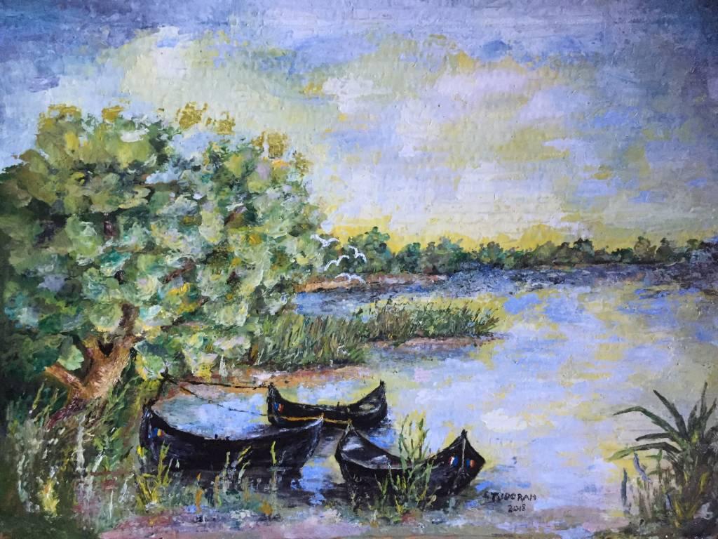 Poza Pe malul Dunarii - peisaj