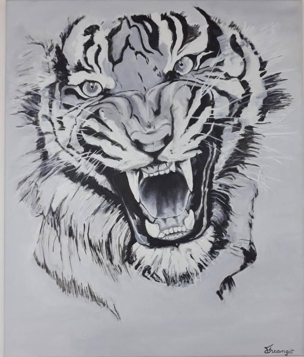Poza Tigru