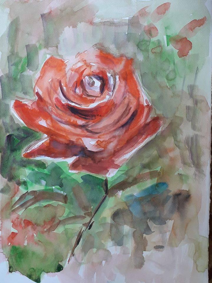Poza Trandafir rosu