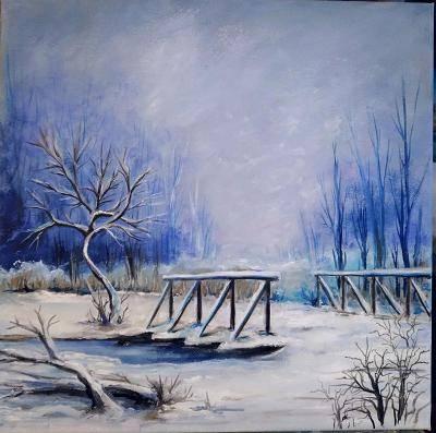 Poza Un pod iarna
