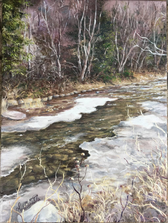 Poza Valea in culori de iarna