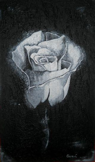Picturi alb negru White Passion