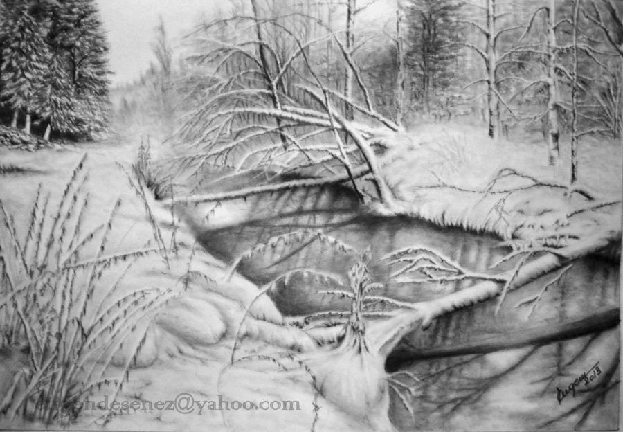 Picturi alb negru Feerie de iarna 2