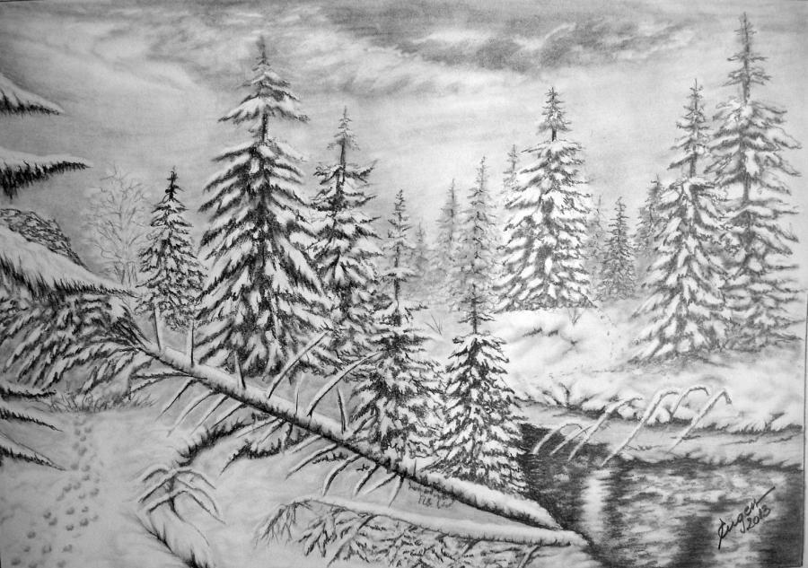 Picturi alb negru Riul dintre brazi