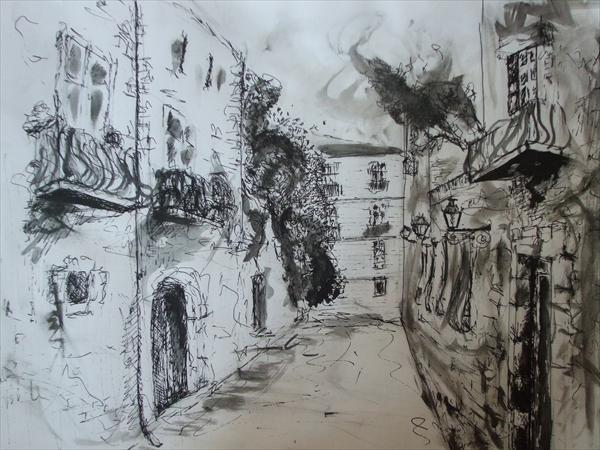 Picturi alb negru Straduta