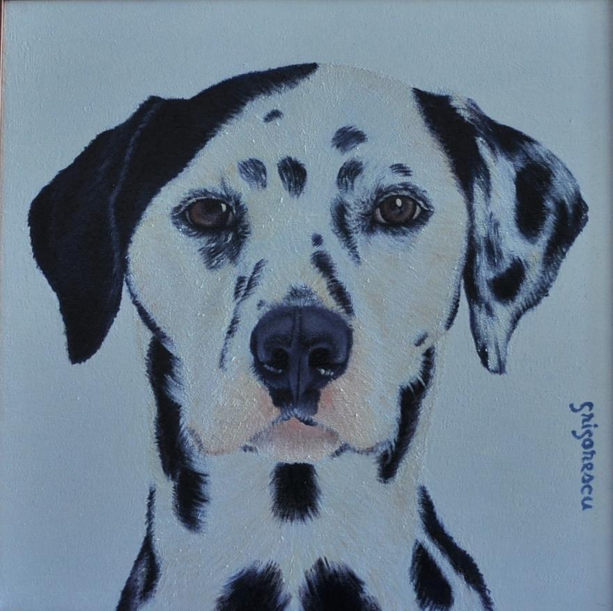 Picturi cu animale portret dalmatian