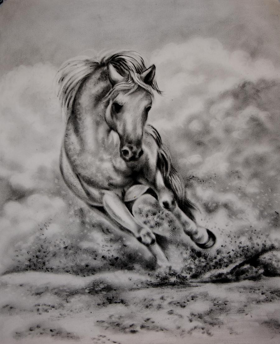 Picturi cu animale Cal in galop