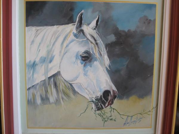 Picturi cu animale Calul