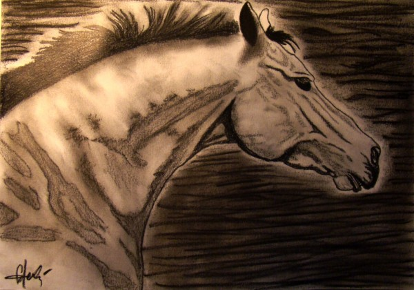 Picturi cu animale Elegance