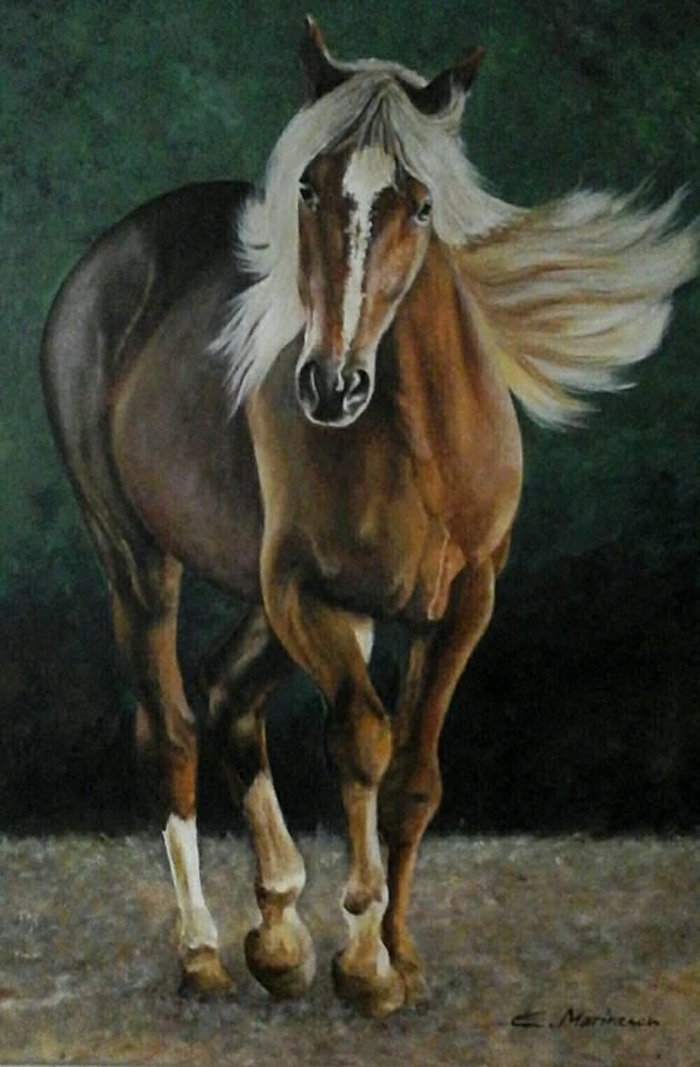 Picturi cu animale Cal la pas
