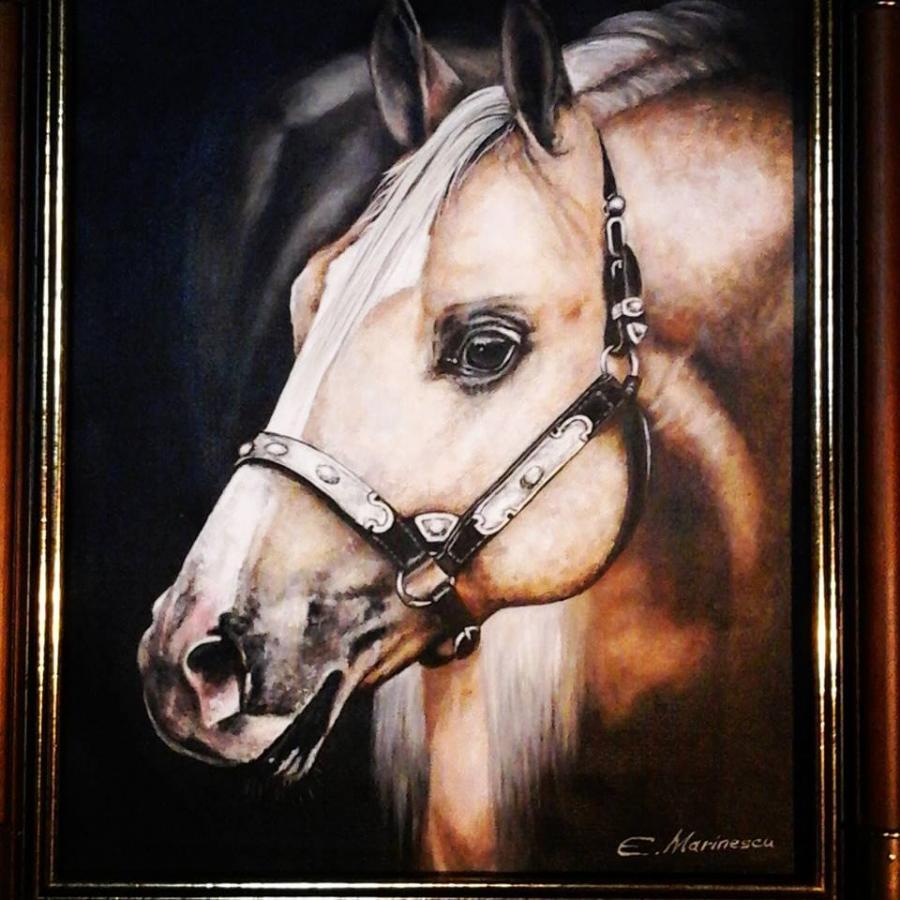 Picturi cu animale Mandrete de cal
