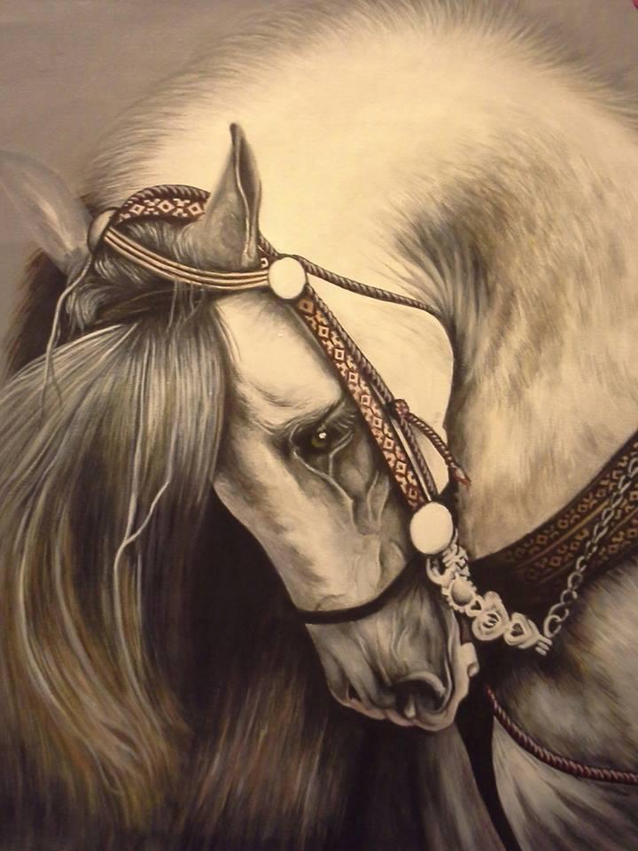 Picturi cu animale Pictura Cal sur