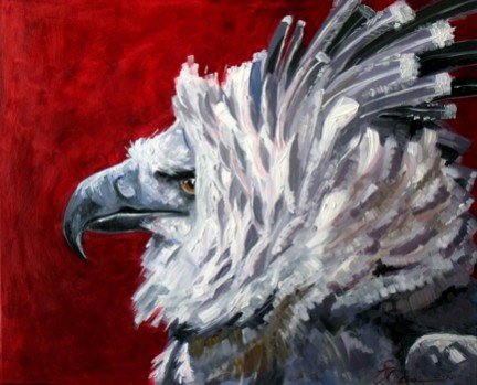 Picturi cu animale Pasare 4