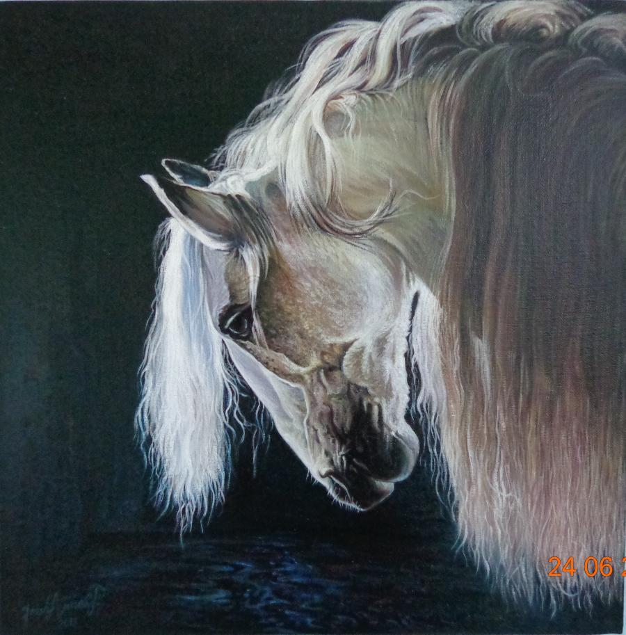 Picturi cu animale cal portret