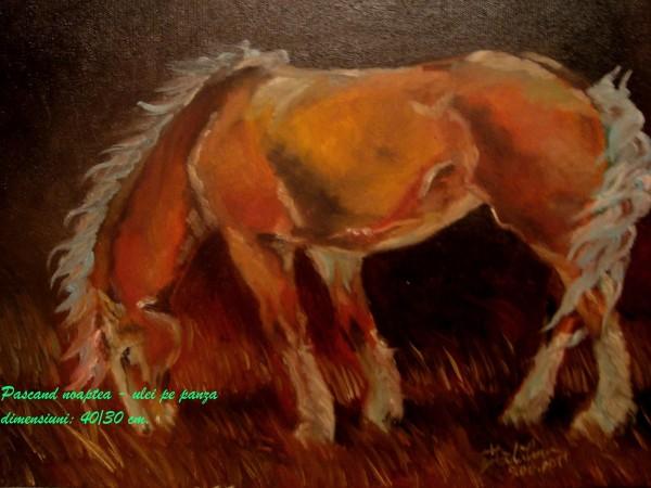 Picturi cu animale Pascand noaptea