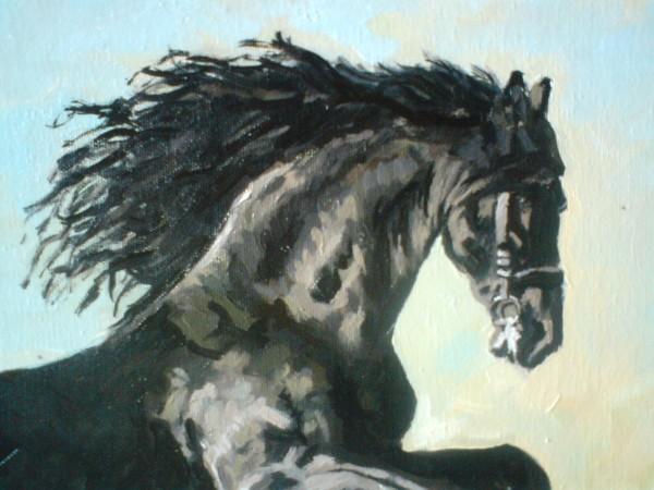 Picturi cu animale Cal salbatic 2