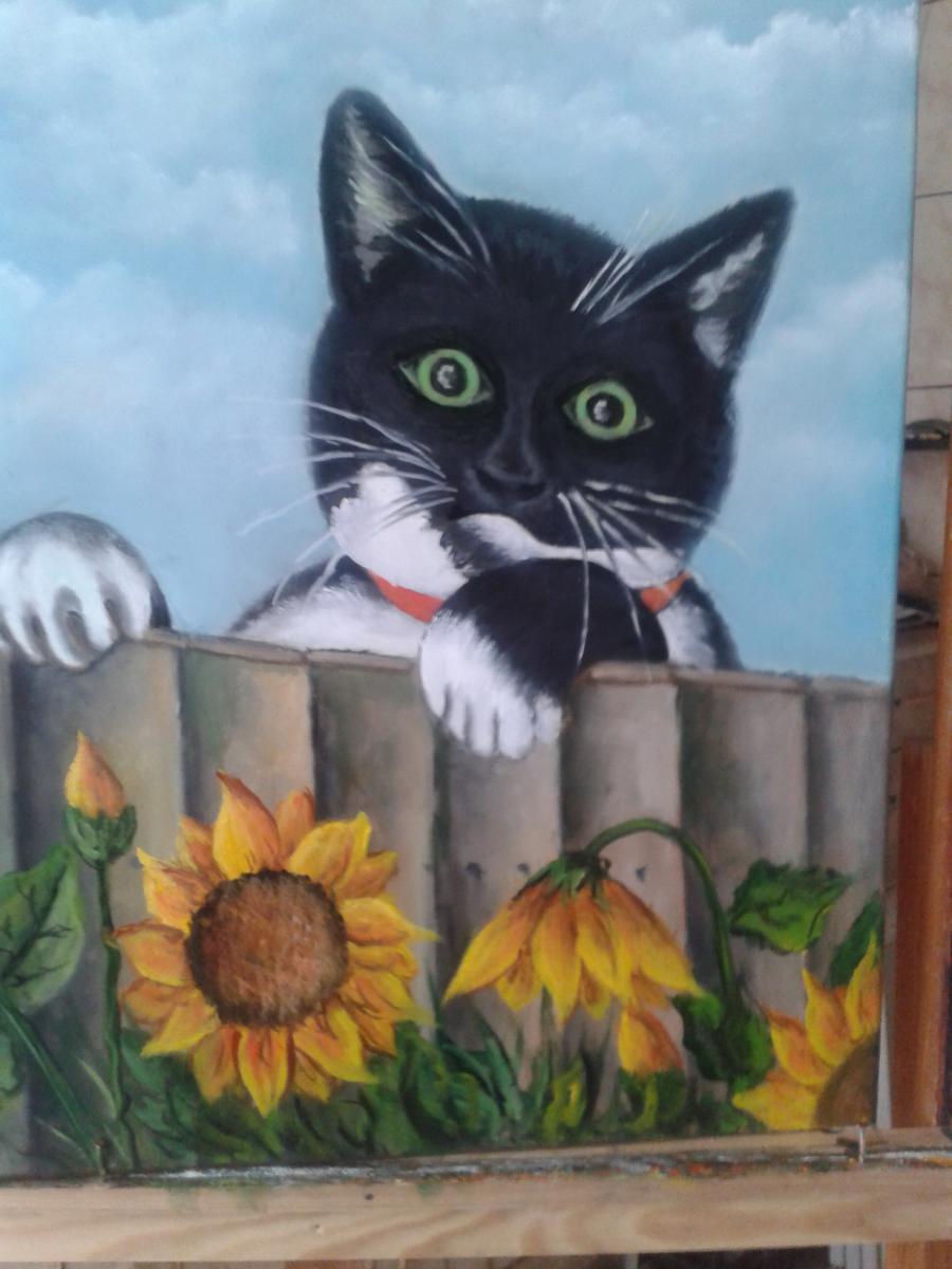 Picturi cu animale codo