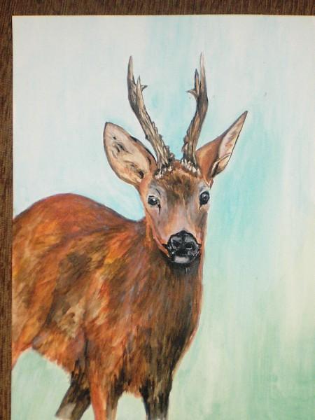 Picturi cu animale Caprior 1