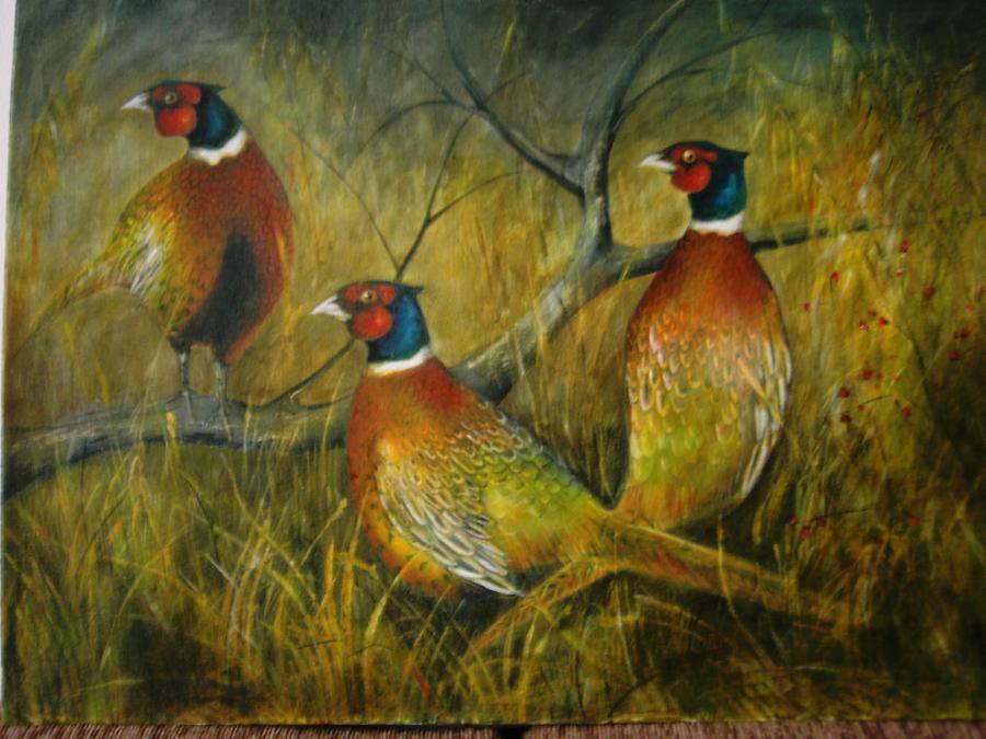 Picturi cu animale peisaj de toamna cu fazani