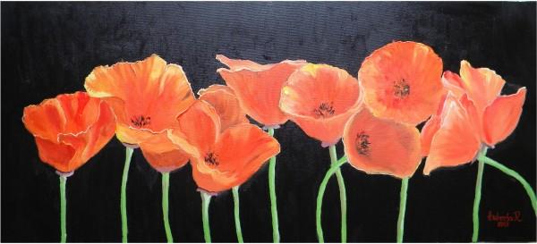 Picturi cu flori Maci in intuneric