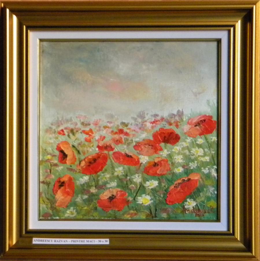 Picturi cu flori Printre maci