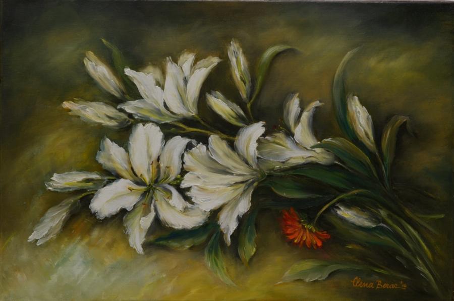 Picturi cu flori crini imperiali albi