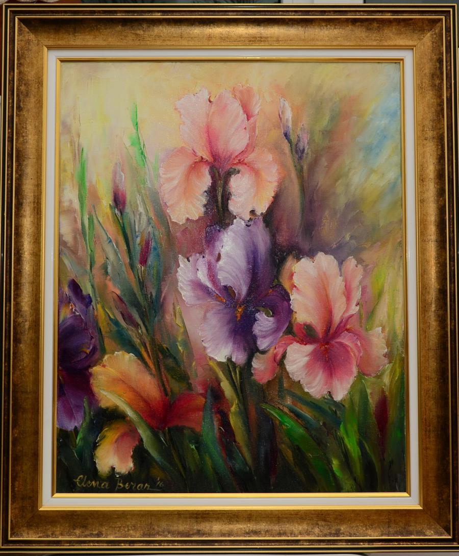 Picturi cu flori Irisi multicolori