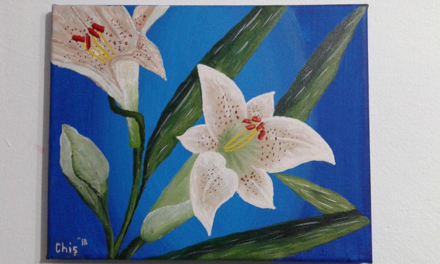 Picturi cu flori Crinul alb