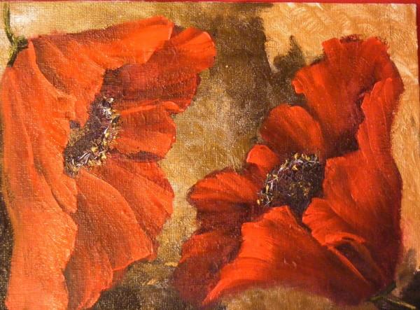 Picturi cu flori Macii iubirii