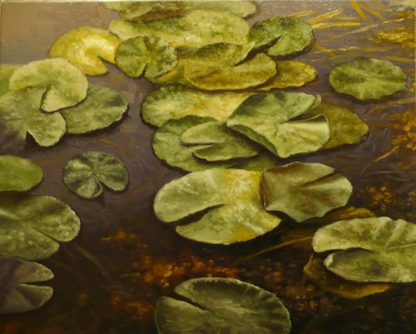 Picturi cu flori Nuferi 3