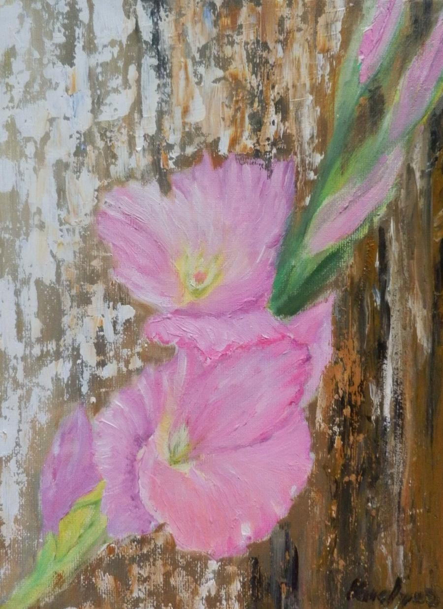 Picturi cu flori Gladiole roz