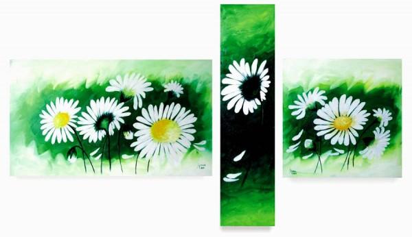 Picturi cu flori Margarete roua diminetii