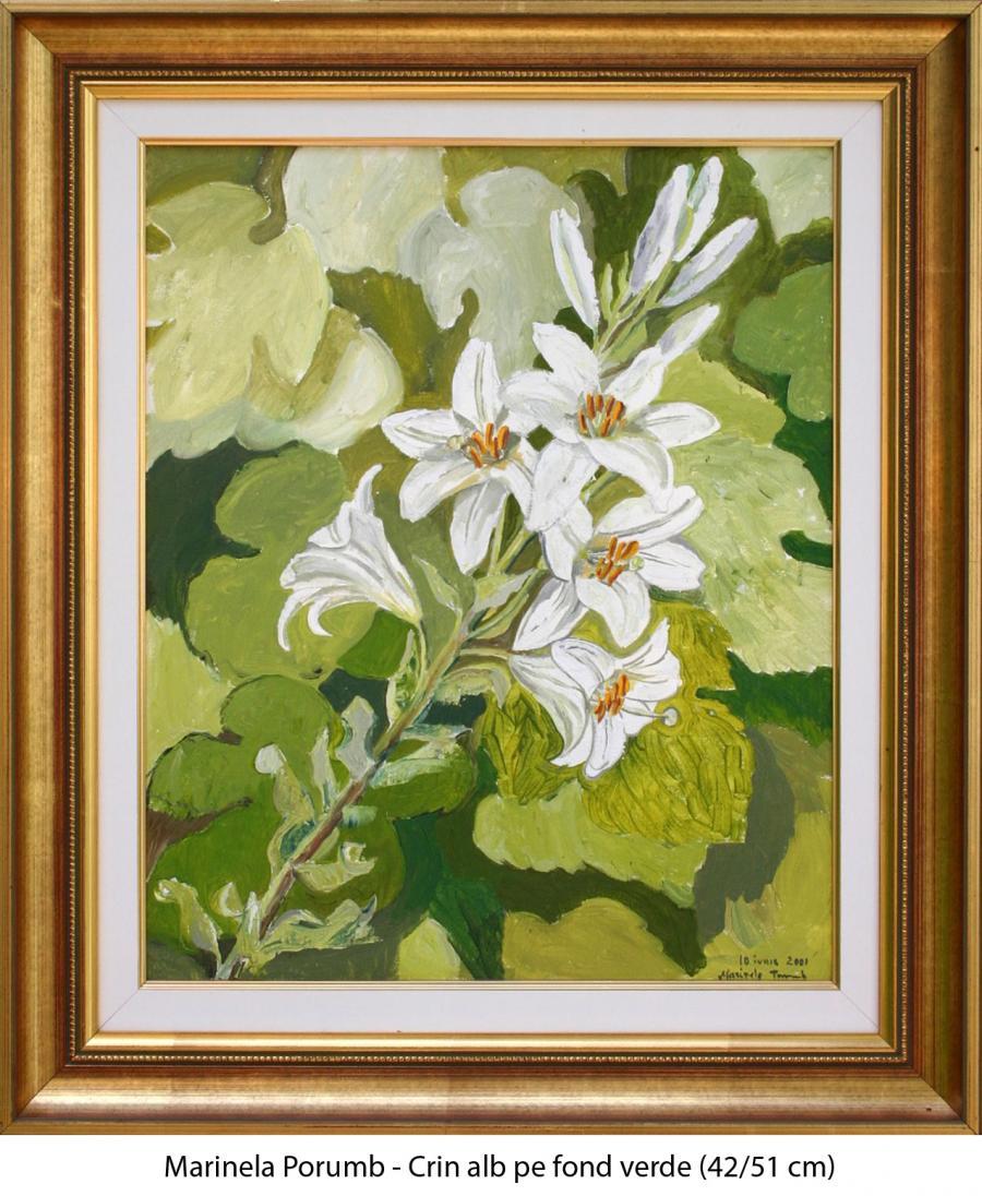 Picturi cu flori Crin alb pe fond verde