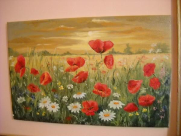 Picturi cu flori Camp inflori 3