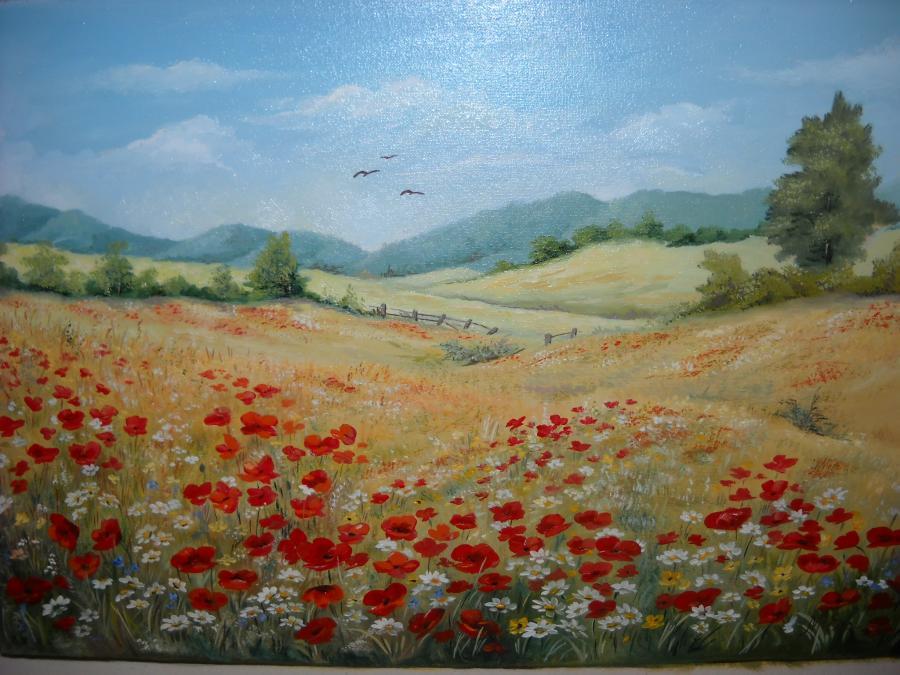 Picturi cu flori Camp inflorit 20
