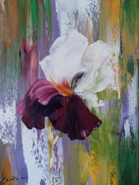 Picturi cu flori Iris 2